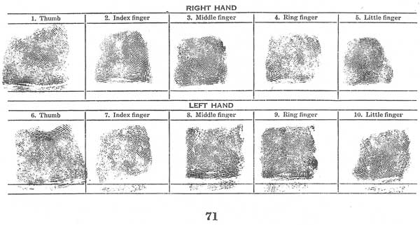 photo about Printable Fingerprint Cards named fingerprints
