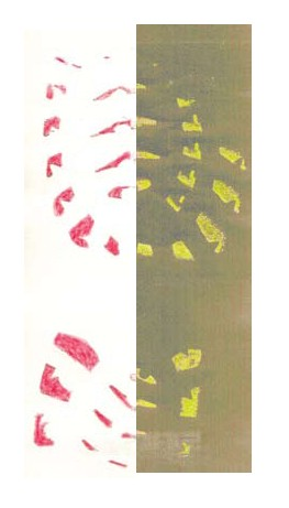 Hungarian Red Shoeprint