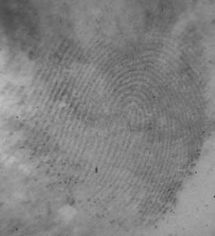 distort finger prints