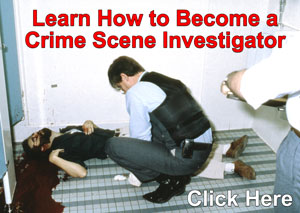 Learn How to Become a CSI